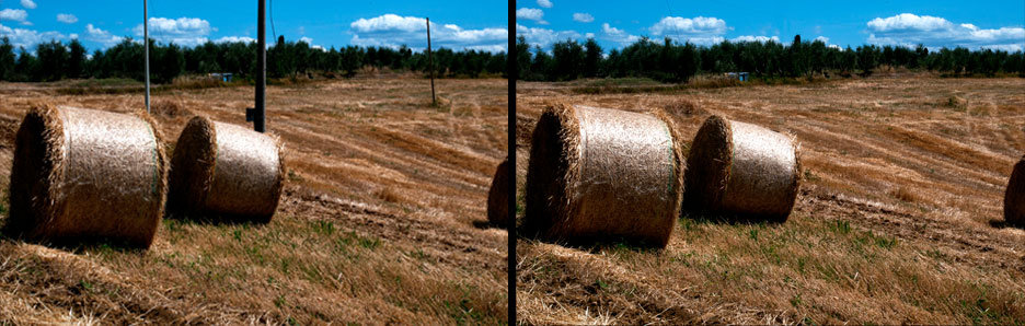Bales-before-and-after