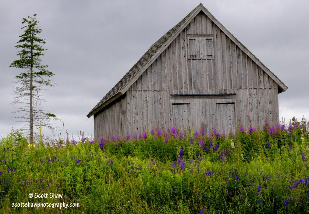 Barn on Hill, Highland Village, Nova Scotia