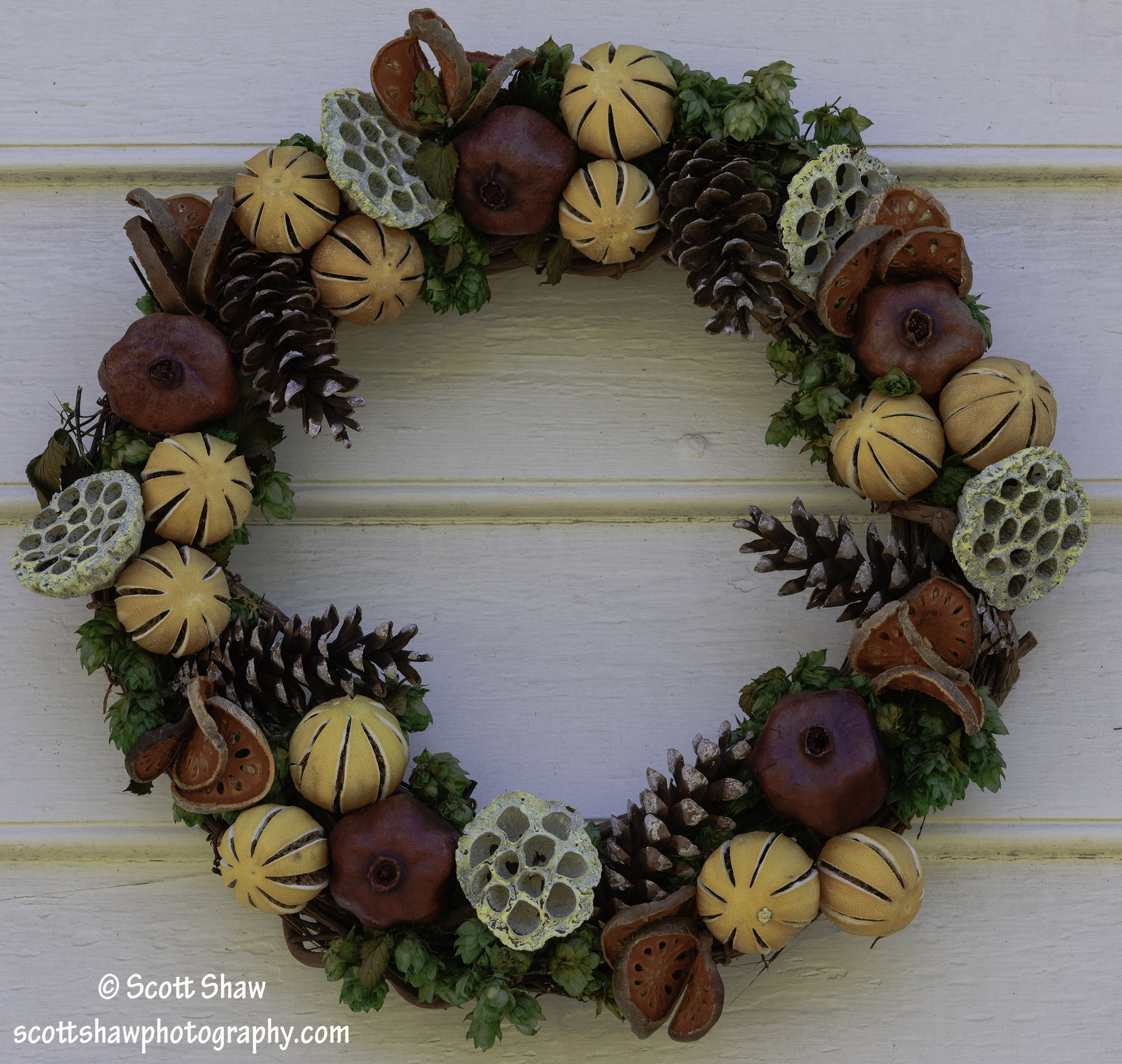 Williamsburg Christmas Wreath #2