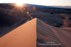 Sand Dune Flare
