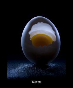 Eggs-Ray
